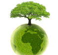 Respect et protection de l'environnement